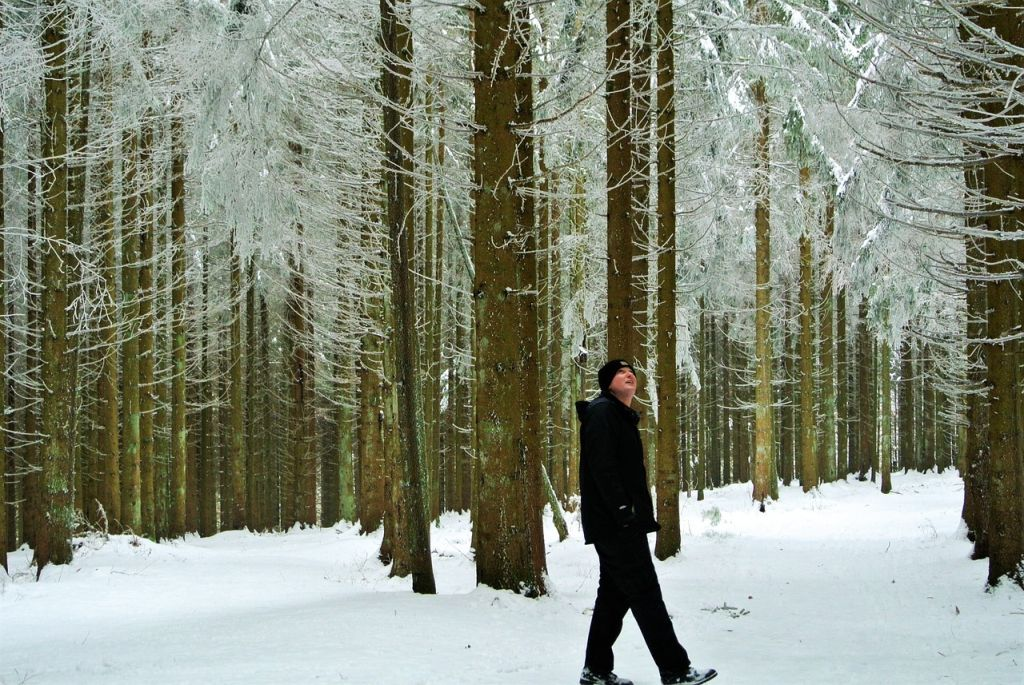 Man walking in snowy woodland (EFAW+F course)