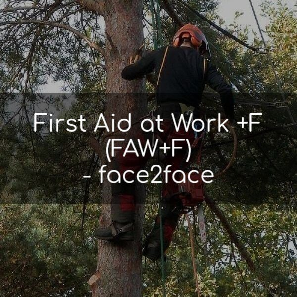 FAW+F First Aid At Work +F Forestry Commission Course