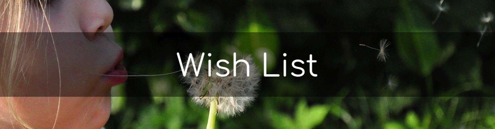 Wish List - Girl blowing a dandelion.